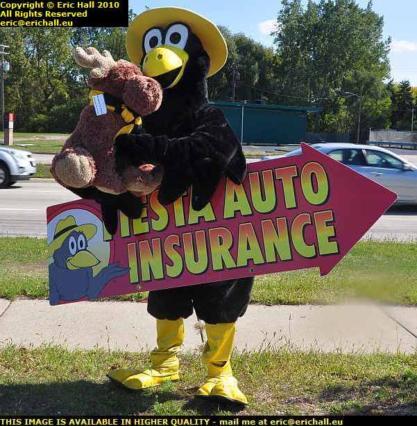 fiesta auto insurance advertising mascot