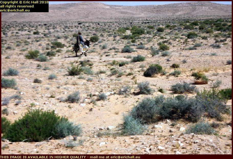 nomadic herdsman Djebel Dahar mountains tunisia africa