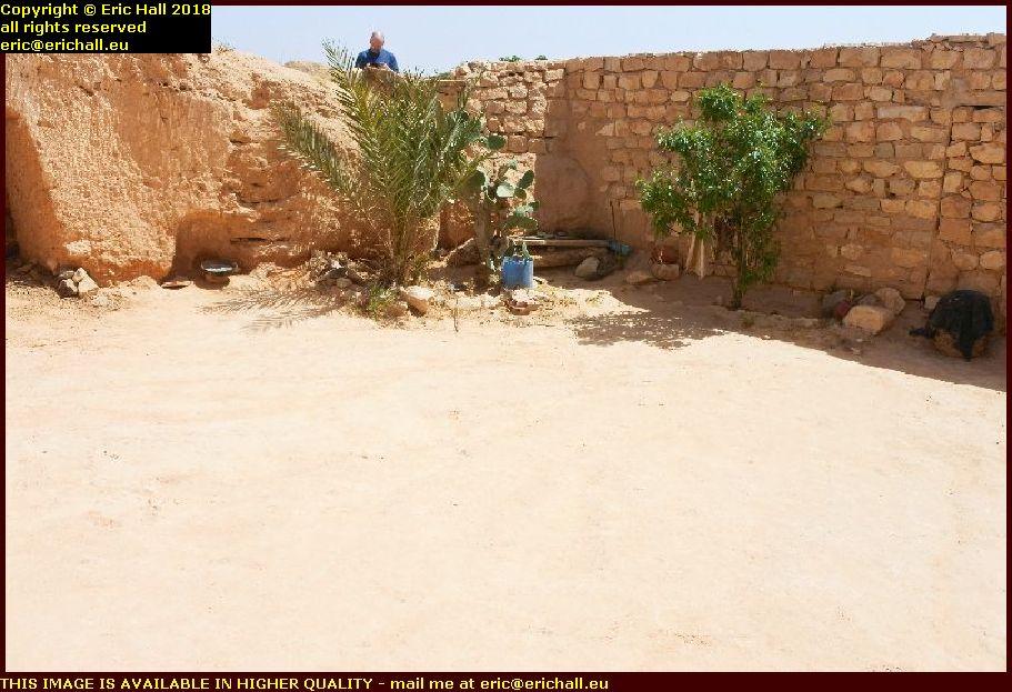 fig tree palm tree date tree tunisian berber cliff dwelling matmata tunisia africa