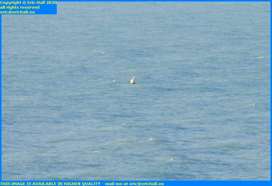 buoy english channel granville manche normandy france eric hall