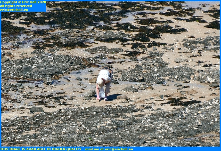 peche a pied beach plat gousset granville manche normandy france eric hall
