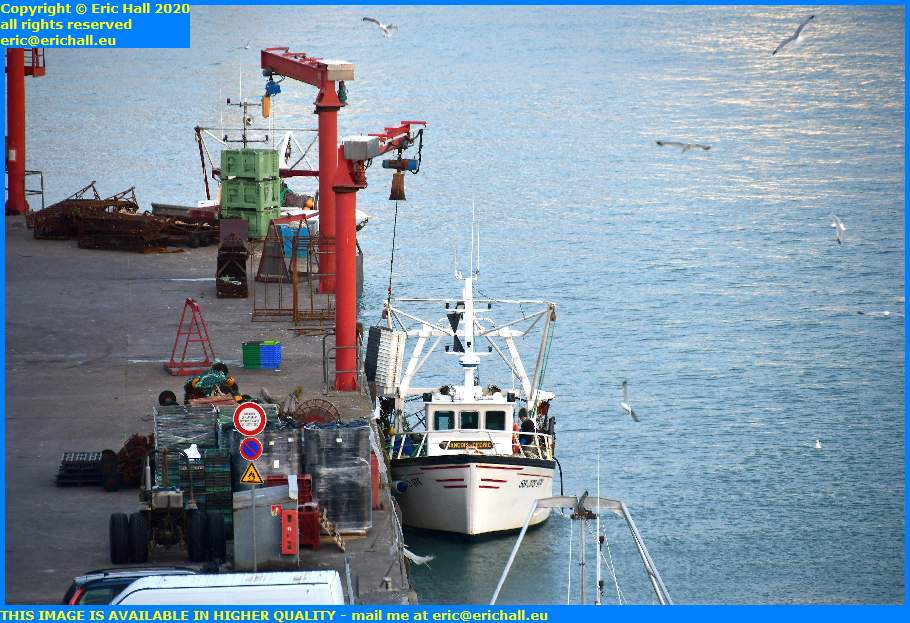 seagull fishing boat unloading fish processing plant port de granville harbour manche normandy france eric hall