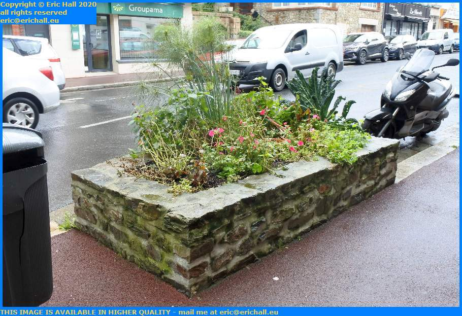 Flower Bed Rue Couraye Granville Manche Normandy France Eric Hall