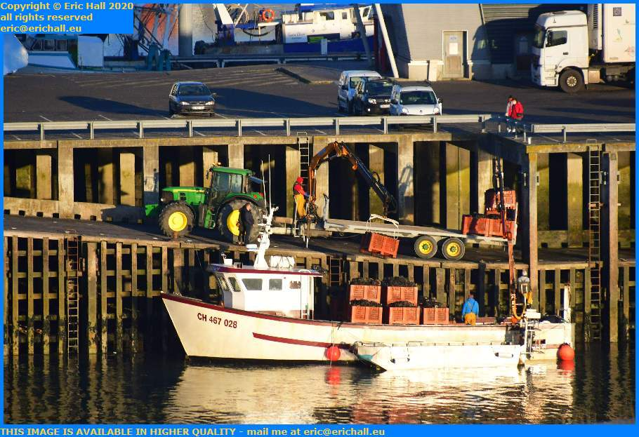 unloading shellfish from boat port de Granville harbour Manche Normandy France Eric Hall