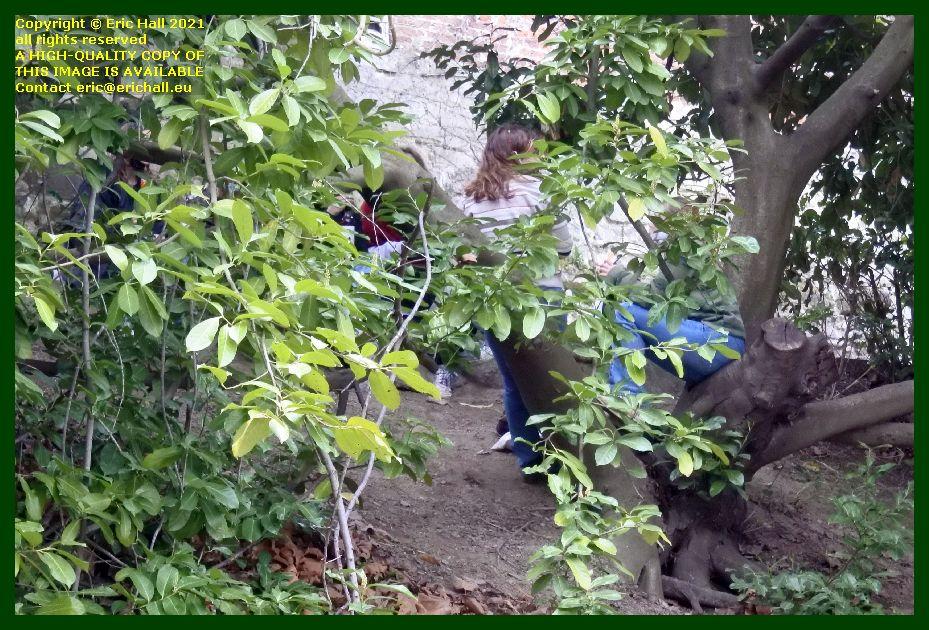 girls in tree sint donatuspark leuven belgium Eric Hall