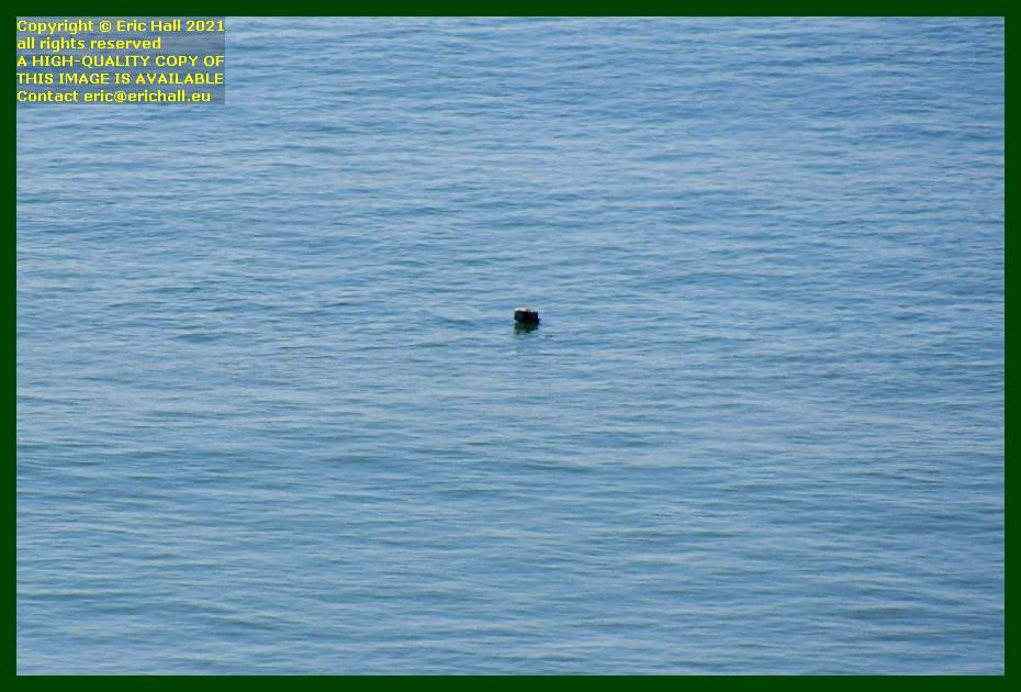 object floating in the sea pointe du roc Granville Manche Normandy France Eric Hall
