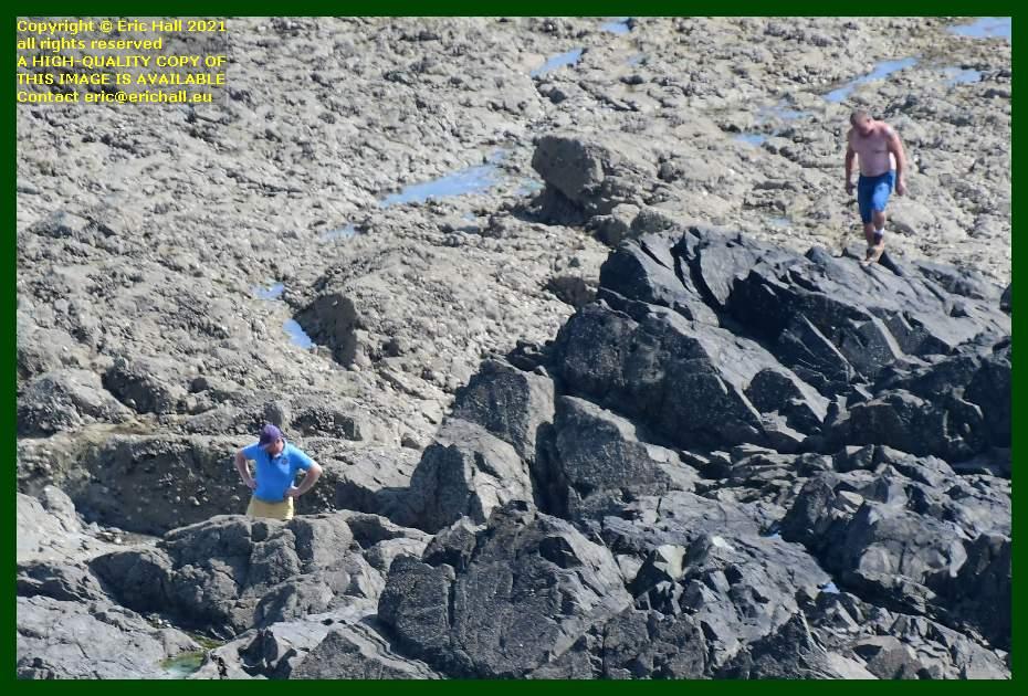 men searching in rock pools peche à pied pointe du roc Granville Manche Normandy France Eric Hall