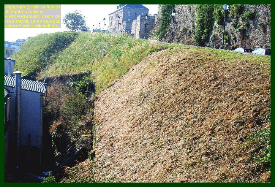 trimming vegetation Boulevard des 2E et 202E de Ligne Granville Manche Normandy France Eric Hall photo September 2021